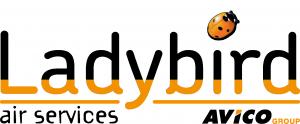 LadyBird-Air-01